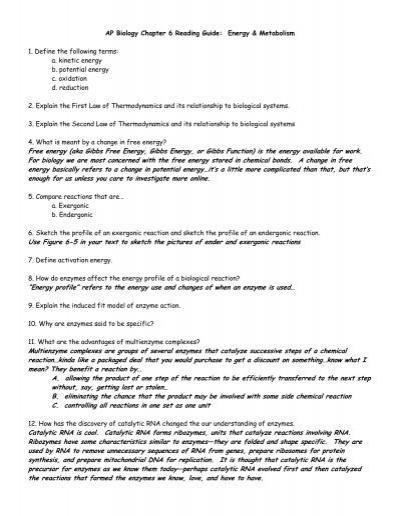 ap biology enzyme essay rubric Hills high school ms foglia ap biology apbi olgy 2004-2005 essay 2000 essay on community service project ap biology essay paper bag writer master of arts in.