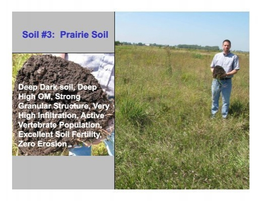 So now what is soil for Mineral soil definition