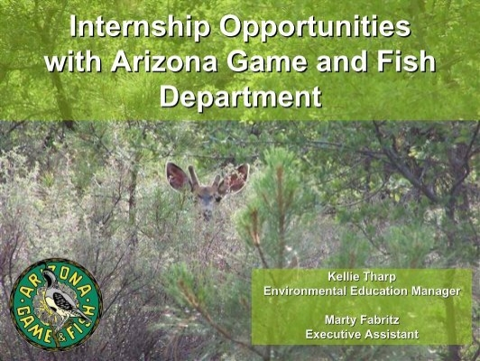 Internship opportunities with arizona game and fish department for Az game and fish dept