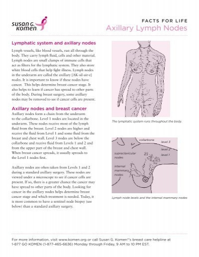 Axillary Lymph Nodes - Susan G. Komen for the Cure