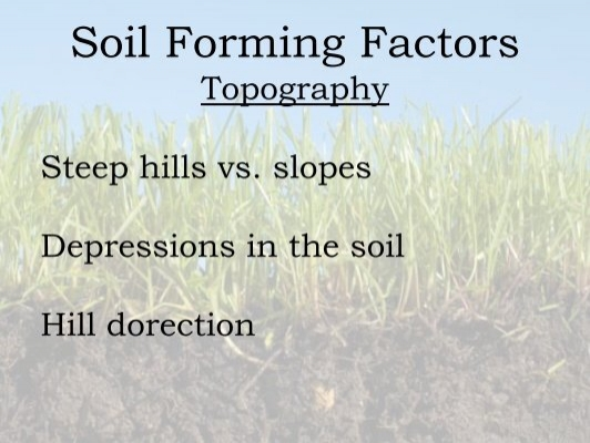 Soil forming factors biot for Soil factors