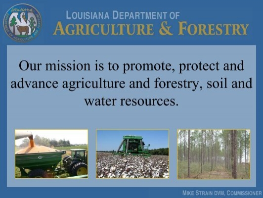 Louisiana dept of agriculture forestry louisiana for Usda rural development louisiana