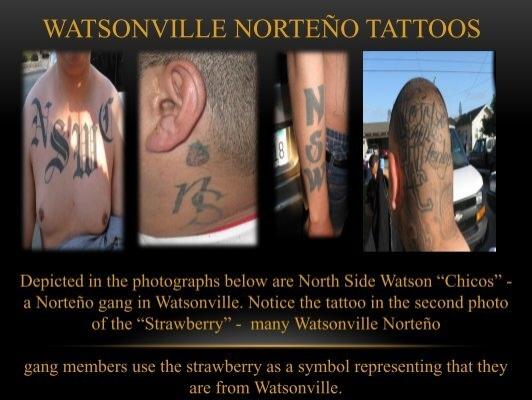 Watsonville Norteo Tatt