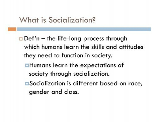 define the concept of socialization