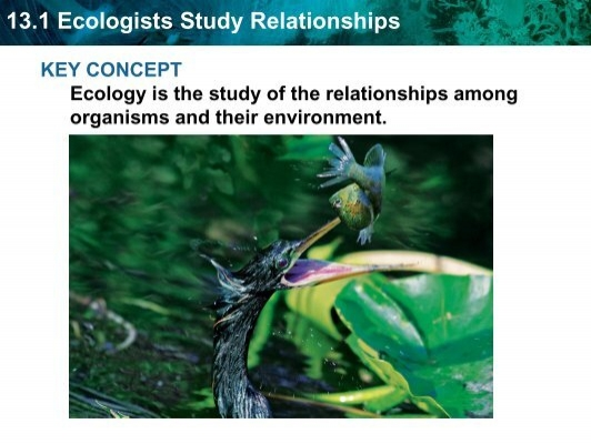 What does ecology have to do with me? | Ecological Society ...