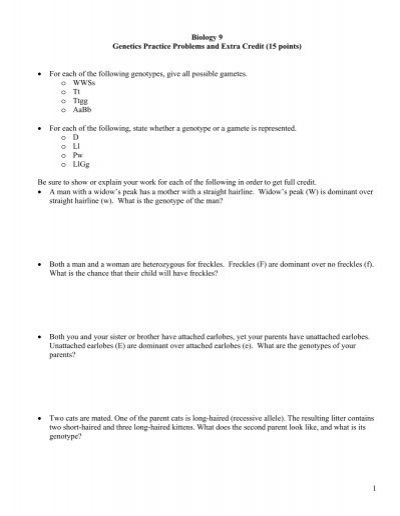 1 Biology 9 Genetics Practice Problems and Extra ... - Fog.ccsf.edu