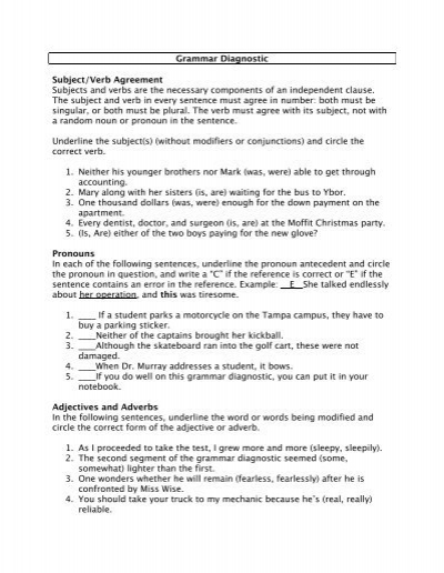Grammar Diagnostic Subjectverb Agreement First Year
