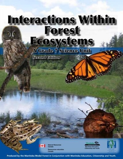 Interactions With Forest Ecosystems Curriculum