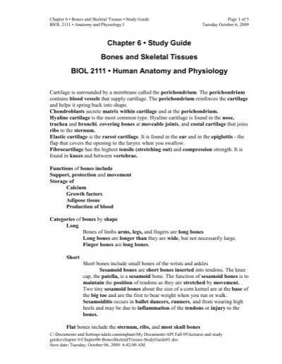 Chapter 6 Study Guide Bones And Skeletal Tissues Biol 2111