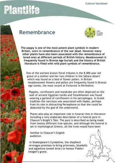Remembrance Wildflower Europe