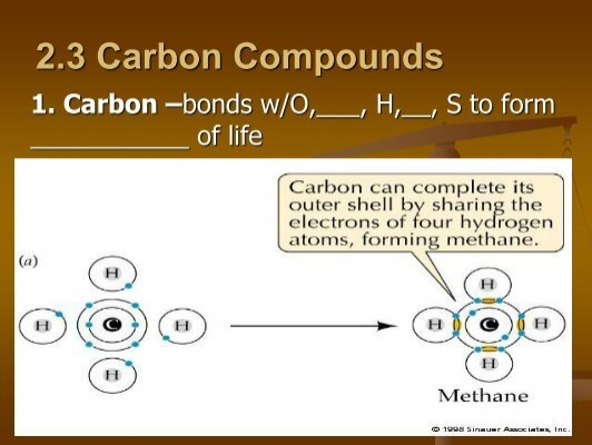 activities for carbon compounds Organic chemistry focuses on the study of carbon-based compounds, which exist  all around us use these activities to help students understand some.