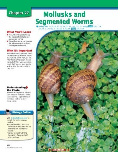 Chapter 27: Mollusks and Segmented Worms - Garden Valley Photo