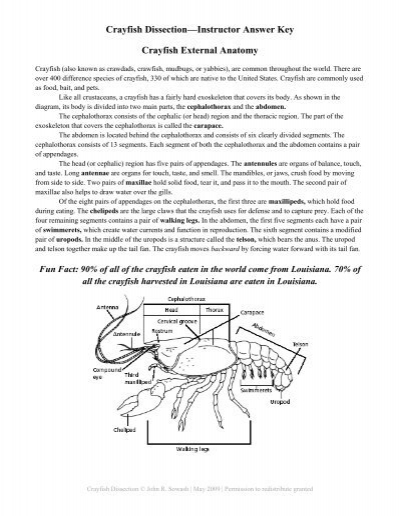 crayfish.instructor