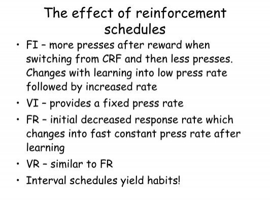 the effect of reinforcement on performance essay Performance through coaching based on mystery shopper feedback: a quasi-experimental study g a r y p l at h a m , r o b e r t c  f o r d , and danny tzabbar based on reinforcement theory, a quasi-experimental design was used to evaluate the effect of.