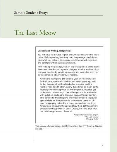 Preschool Observation Essay Free Essays - StudyMode