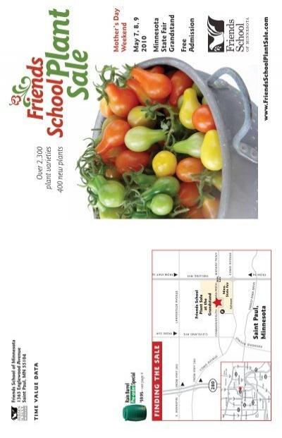 150 Seeds Corn Purple Red Waxy Siam Ruby Bulbs Organic For Health Garden Plants
