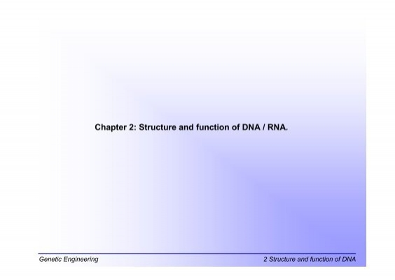 dna rna structure and function