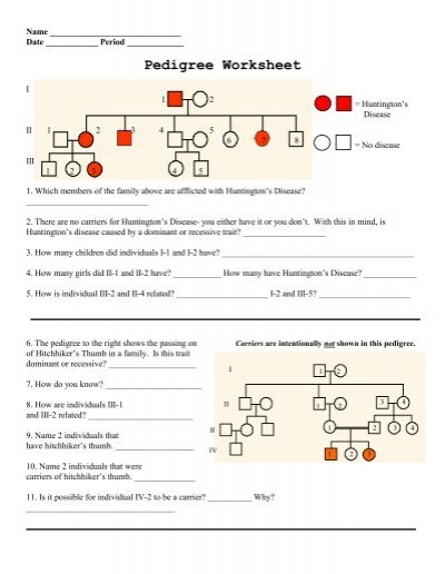 Pedigree Worksheet