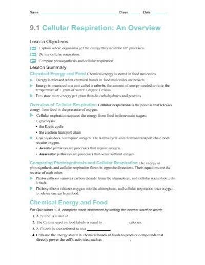 9 1 Cellular Respiration An Overview