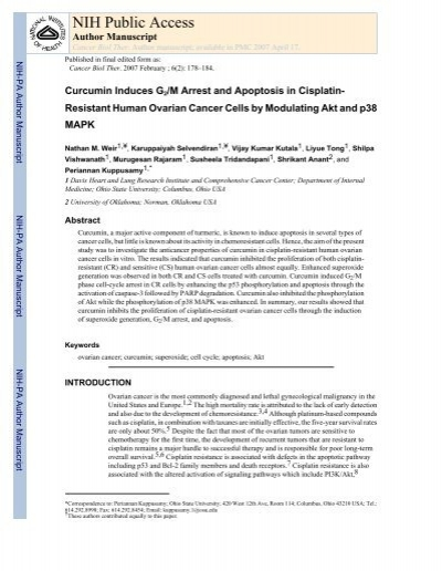 Cancer Biol Ther Curcumin Induces G2m Arrest And Apoptosis In