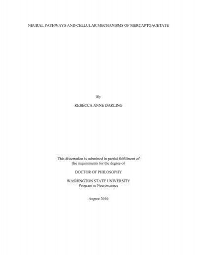 Thesis/Dissertation | UW Graduate School