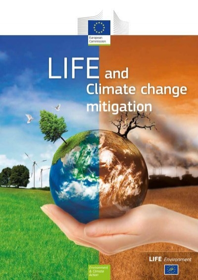 european environment essay