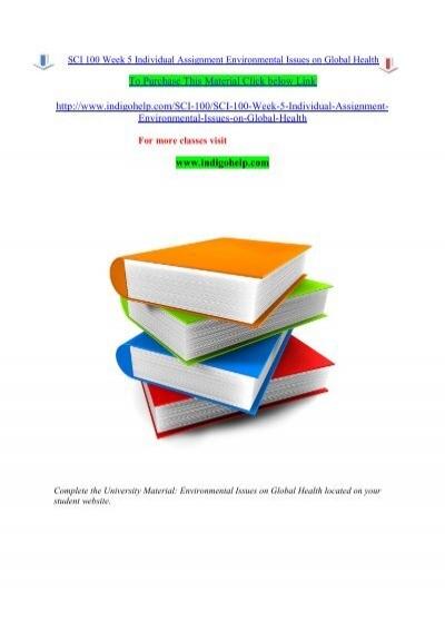 city environmental essay descriptive