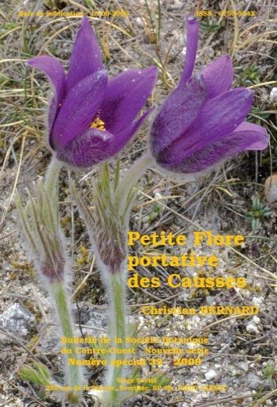 30-50 cm Graines Adonis rose violettes