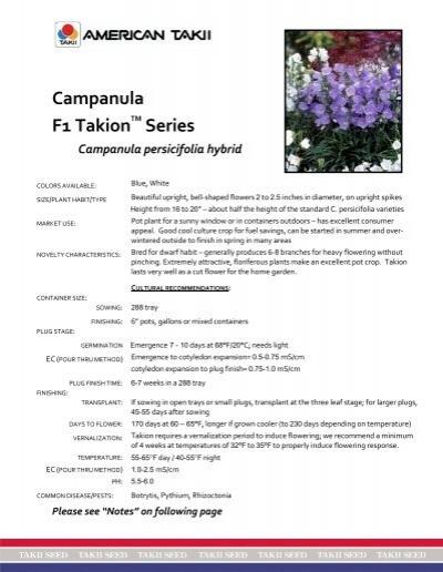 Takion Blue F1-20 Seeds Campanula