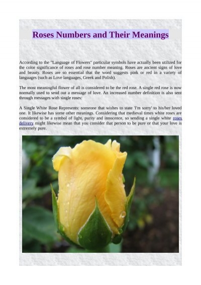 Roses Numbers And Their Meanings