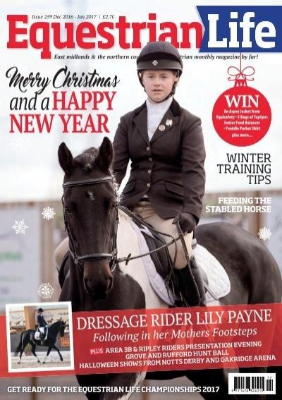 Aston Riding Breech Tights by Whitaker Blue, EU 26 - UK 8