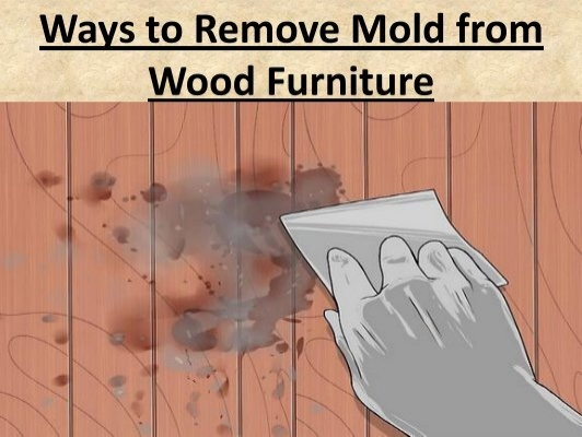 How To Get Mold Furniture Annihilate Black Mold On Wood