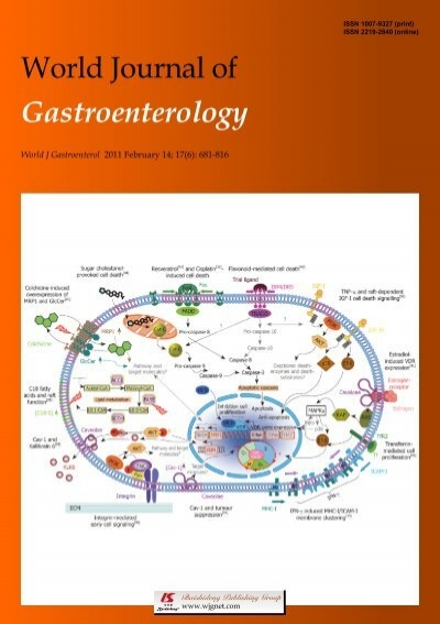 And Hbeag Patients World Journal Of Gastroenterology