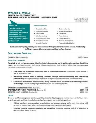 sample chrono functional travel consultant resume