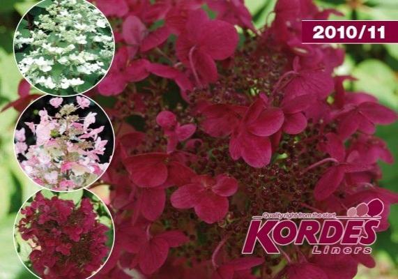 6mm Salmon pink flower tufts x 117