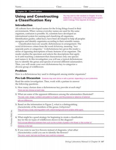 18 Using and Constructing a Classification Key, ATE
