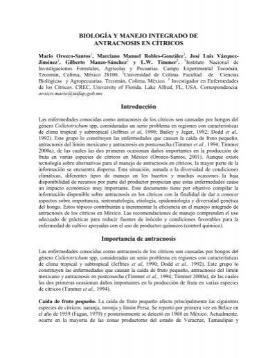 Biologia y manejo de antracnosis en c for Manejo de viveros pdf