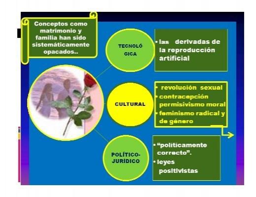 Conceptos como ma for Concepto de familia pdf
