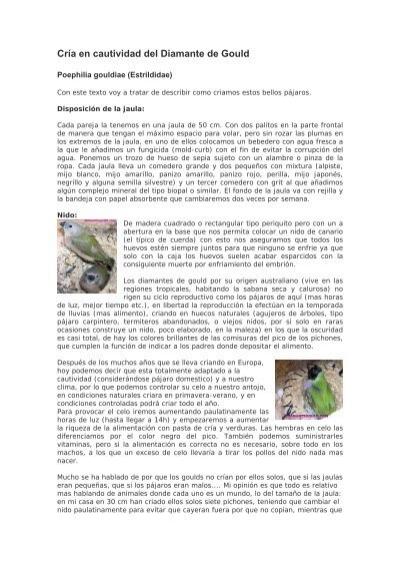 Cría En Cautividad Del Diamante De Gould Aviario Indalocan