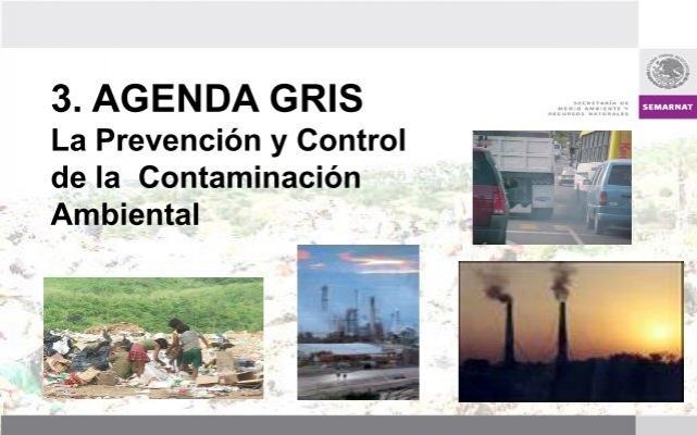 Agenda Gris. La Prevención y Control de la Contaminación ...
