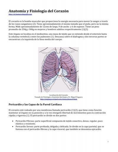 Anatomía y Fisiología del Corazón - BlueJayGallery.com