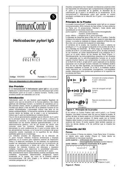 qué significa anticuerpos anti helicobacter pylori igg positivo