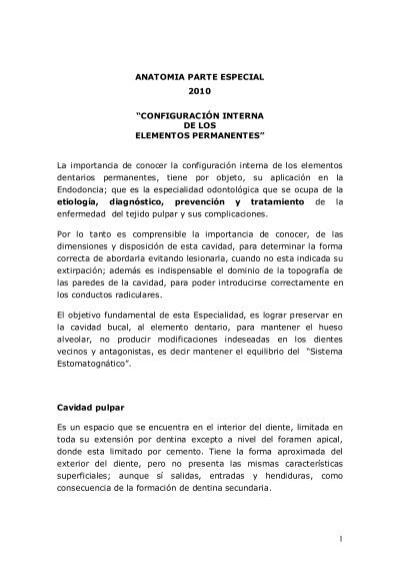 ANATOMIA PARTE ESPECIAL