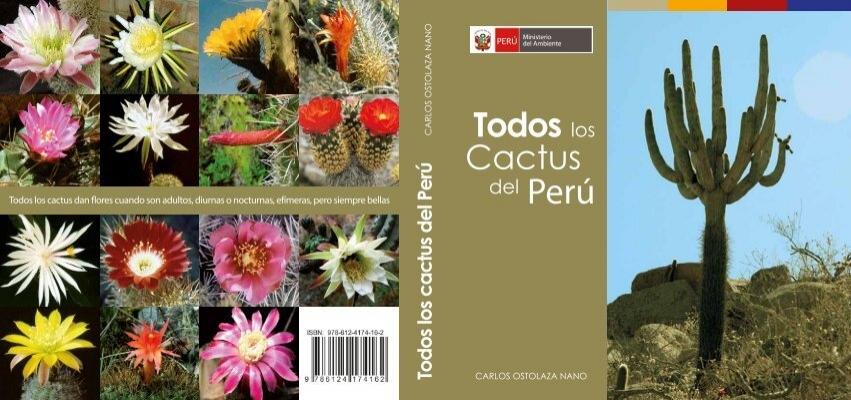 de alta germinaci/ón semillas de flores Mezcla de semillas de cactus Echinopsis 20 part/ículas de siembra