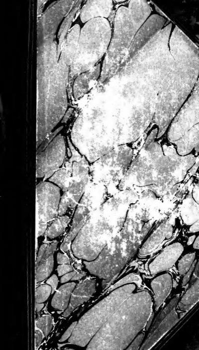 Ruban gros grain effet scène La fée clochette de 25 mm vendu au mètre