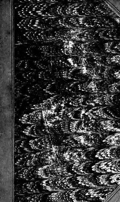 Livre Tails signets-Licorne ou PARESSEUX-Fury amis avec très longue queue