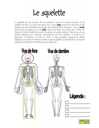 Le squelette est une structure d 39 os qui soutient le for Le jardin qui dit non