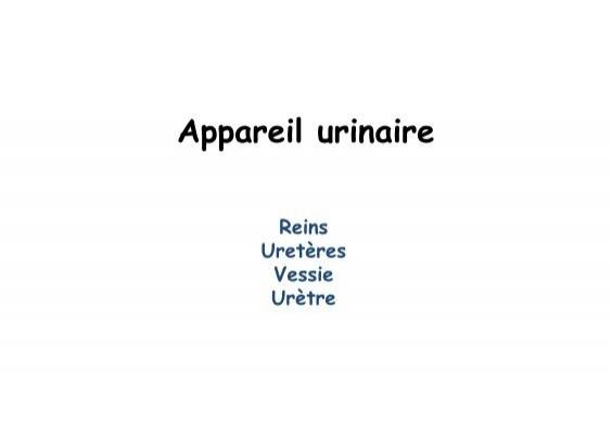 Corpuscule de malpighi ca for Chambre urinaire