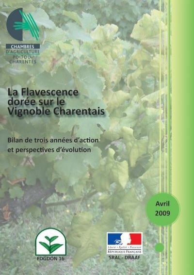 La flavescence dor e sur le vignoble charentais - Chambre agriculture poitou charentes ...
