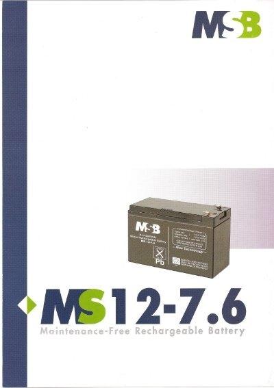 12 msb